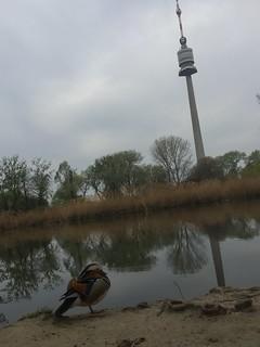 20180415_Donaupark_001