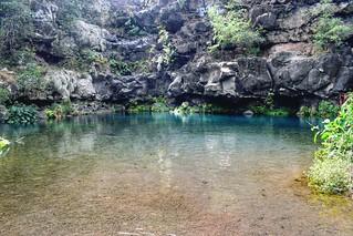 📍 Bassin Cormoran, Ile de le Réunion.