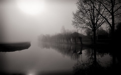 Silhouettes In The Mist (Alfred Grupstra) Tags: tree lake nature reflection water fog landscape river tranquilscene outdoors scenics mist forest silhouette sky autumn blackandwhite nopeople morning dusk