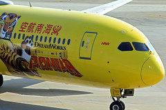 Hainan Airlines / Boeing 787-9 Dreamliner / B-7302 (vic_206) Tags: hainanairlines boeing7879dreamliner b7302 pvg zspd kungfupandalivery