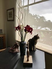 Watching the world go by (kimbar/Thanks for 3.5 million views!) Tags: cat window table oakland california vase sculptures penelope livingroom