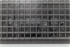 _IMG9637 (John Smith Fitzgerald) Tags: kodak ektar medalist medalistii kodakmedalist trix hc110 bw street snap tokyo japan ektar10035 東京 ginza 銀座 モノクロ 白黒 フィルム 中判 69 6x9 コダック メダリスト メダリストii rf レンジファインダー rangefinder