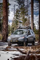 2012 Subaru Forester (softroadingthewest.com) Tags: sh forester subaru oregon central cascades ponderosa offroad softroading subaruforester