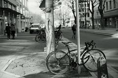 spring light@KÖ, Düsseldorf 10 (Amselchen) Tags: bicycle street streetphotography trees mono monochrome bokeh blur dof depthoffield germany light shadow season spring sony a7rii alpha7rm2 sonyilce7rm2 zeiss carlzeiss planar planar1450 planar5014zs planar1450tzs
