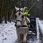 Kutsche im Schnee thumbnail