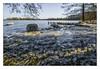 Ice spatter (bavare51) Tags: tollensesee winter eis ufer landschaft natur bäume werder