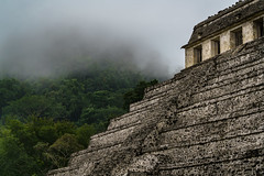 The Temple of Inscriptions (DSC6426) (DJOBurton) Tags: jungle temple maya palenque mexico