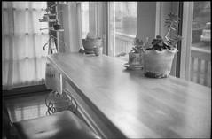 interior, counter, tea room Alchemy, Asheville, NC, Rollei Prego 140, Arista.Edu 400, Ilford Ilfosol 3 Developer, 3.20.18 (steve aimone) Tags: counter tearoom reflections alchemy asheville northcarolina rolleiprego140 aristaedu400 ilfordilfosol3developer 35mm film compactcamera interior sunlit curtains transparency