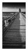 Rügen vertical (Knipsbildchenknipser) Tags: rügen sommer summer ostsee sw schwarzweiss monochrome vertikal vertical blackandwhite blackwhite bw