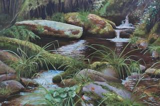 Azores stream - Carlos Ferreira