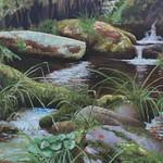 Azores stream - Carlos Ferreira thumbnail