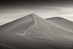 Distance (maxxsmart) Tags: 2015 bw blackandwhite california deathvalley march mesquite nikond810 monochrome roadtrip sanddunes sepia sunrise