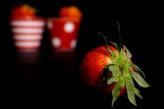 (M a r i S à) Tags: blackbackground strawberries stilllife bokeh vanish sfocato blurred fuzzy hazy lowkey
