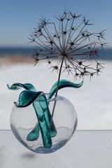 Baltic Sea Glass (diwan) Tags: kongerigetdanmark königreichdänemark denmark bornholm regionhovedstaden gudhjem balticseaglass glass design art google nikcollection plugins viveza2 sigma35mmf14dghsmart canoneos5dmarkiv canon eos 2018 geotagged geo:lon=14997760 geo:lat=55189390