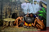 Cooking Me! (itchypaws) Tags: kuta bali indonesia id thing one two cannibal pot cooking 2017 island vacation holiday asia museum trick 3d seminyak dream zone dmz legian