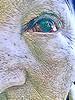 Post surgical eye. All is good.              WH: Digital Distortion (enovember) Tags: prizm mosaic mosaicprism digital distort surgery eye