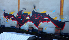 RUBER GEK (RONEA-RUBER-GEK) Tags: graffiti graff francais tag vandal elevation black red gek team 42 saint etienne loire rain water fire wild nature style angry negative montana zone rouge murals paint painting writing handstyle