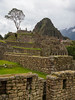 20180304_Peru_Machu_Picchu_395.jpg (Mike Ramsay) Tags: peru machupicchu travel holiday