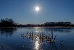 Sunrise on thin ice (koos.dewit) Tags: fujifilm fujifilmxe2 fujinonxf1855mm kardinge koosdewit cold ice koosdewitnl lake landscape reflections sun sunrays sunrise explore 20180321