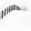 Disappearance (nrg_crisis) Tags: winter snow outdoors fence farm hill monochrome shenandoahvalley virginia hff