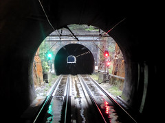 tunnel to tunnel (sth475) Tags: railway railroad train track line view ontheline tunnel tunnels signals infrastructure signal colourlight singlelight nsw automaticsignal clear stop indication wet zigzagtunnels mainwest shortwest bluemountains australia autumn