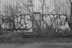 Levis Jigl (Psychedelic Wardad) Tags: minnesota twincities graffiti ldeez ld's ld jigl mfk syw levis