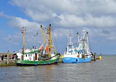 Kutter in Neuharlingersiel, zu Gast aus Ditzum im Rheiderland (antje whv) Tags: neuharlingersiel kutter hafen port ostfriesland nordsee