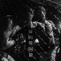 MMA_Yunquera-Henares_11-02-2017_0035 (byJMdF) Tags: amarilla canon eos c5d mk ii aficionado amateur lightroom documental foto photo photography fotografia color bn deportes artes marciales mixtas karate kickboxing boxeo muay thai judo lucha libre grecorromana jiu jitsu brasileño wushu san da sambo taekwondo hombres de honor 82 la jaula yunquera henáres guadalajara españa andalucia andalusia bnw
