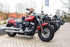 DSC_8942 Harley-Davidson (PeaTJay) Tags: nikon american usa classic sports racing motorcycles bikes reading berkshire harleydavidson