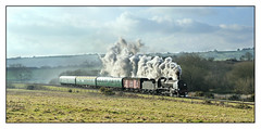 31806 between Harmans Cross and Corfe Castle. (johncheckley) Tags: d90 uksteam railway train locomotive