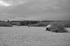 Finland (Kirovchanin) Tags: landscape finland