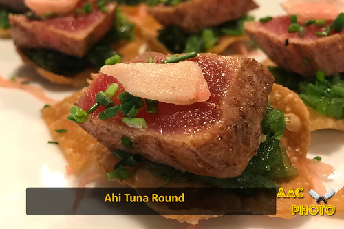 "Ahi Tuna Rounds • <a style=""font-size:0.8em;"" href=""http://www.flickr.com/photos/159796538@N03/27207069208/"" target=""_blank"">View on Flickr</a>"