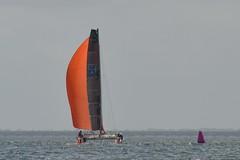 LOX_4079 (Lox Pix) Tags: australia queensland brisbanetogladstone yachtrace catamaran trimaran 2018 bossracing multihull loxpix moretonbay shorncliffe cabbagetreecreek rudder aground sailing loxworx