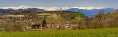 Pirineu de Girona (nuri_bri) Tags: pirineus pirineos pirineudegirona panoramica neu pirineunevat primavera spring osona puigmal catalunya montañas muntanyes muntanyesnevadas mountains snowmountains catalonia spain snow nieve paisatge paisaje landscape inexplore igerscatalunya