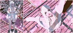 Winter Bird (Puddin Jameson) Tags: arise bossie catwa empire formanails insol limerence maitreya moonamore moonelixir punch stardust stonerella suicidalunborn teefy thelittlebat voluptasvirtualis portrait cute happy girl kawaii sl secondlife fashion blog sakura