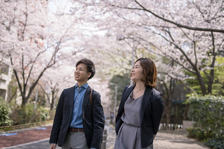 Young business people walking under cherry blossoms