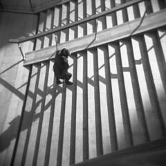Milano (Valt3r Rav3ra - DEVOted!) Tags: holga holgacfn lomo lomography film milano medioformato mediumformat 120 6x6 toycamera plasticcamera ilford ilfordfp4 valt3r valterravera visioniurbane urbanvisions streetphotography street bw biancoenero blackandwhite