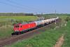 156 001 (René Große) Tags: lok rail railways train 156 meg ovelgünne sachsenanhalt güterzug deutschland germany