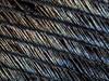 turkey feather detail (marianna_a.) Tags: abstract macro feather pattern nature bird bellows extensiontubes marianna armata asahi pentax lumix gh4 m43