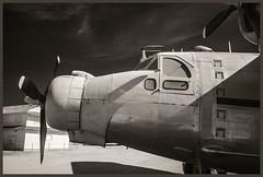 Pima A&S IR #14 2018 (hamsiksa) Tags: flight flying aviation aircraft airplanes aeroplanes jets museums airmuseum museumscivilliantransportpassengerblack whiteinfrareddigital infraredinfrared photography