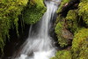 Slow shot of the creek (rozoneill) Tags: north umpqua trail national forest recreation panther mott segment oregon hiking roseburg