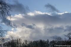 14a (Marjon van der Vegt) Tags: zonzeestrand wolken wind paddenstoel golven koud boomgezichten