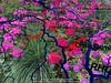 Fleur-de-France-Deuxième-bouquet© (alexandrarougeron) Tags: photo alexandra rougeron composition eric rativeau création imaginaire art