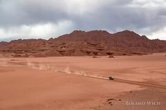 Tolar Grande (Rolandito.) Tags: south america südamerika amérique du sud sudamérica argentina argentine tolar grande desert car track