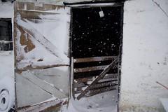 DSC_8001 (seustace2003) Tags: baile átha cliath ireland irlanda ierland irlande dublino dublin éire glencullen gleann cuilinn st patricks day zima winter sneachta sneg snijeg neve neige inverno hiver geimhreadh