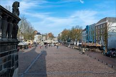 Brink Deventer (Hans van Bockel) Tags: 1680mm brink city d7200 nikkor nikon stad steijn straten deventer overijssel nederland nl waag binnenstad architectuur architecture trappen leeuw beeld middeleeuws medieval