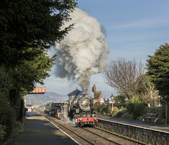 Early Manoeuvres (4486Merlin) Tags: 6046 england europe foreignlocos foreignsteamlocos goodstrain heritagerailways railways southwest station transport usatcclasss160 unitedkingdom westcountry westsomersetrailway blueanchor somerset gbr wsrspringsteamgala