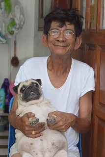 man with his obese pug