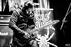 Wolf Spider - live in Metalmania XXIV fot. Łukasz MNTS Miętka-16