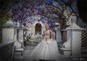 """Composizione con modella di """"Roma Spose"""" (ottobre 2014) e pergolato di glicine a Villa d'Este (aprile 2015) (adrianaaprati) Tags: villadeste model fashionshow weddingdress romaspose pergola wisteria historicvilla composition"""